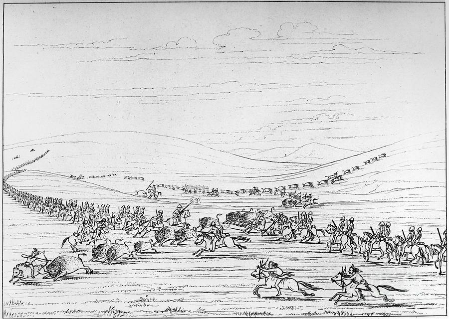 1844 Photograph - Catlin: Buffalo Hunt by Granger