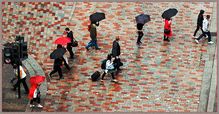 Rain Photograph - Caught In The Rain by Barry Hayton