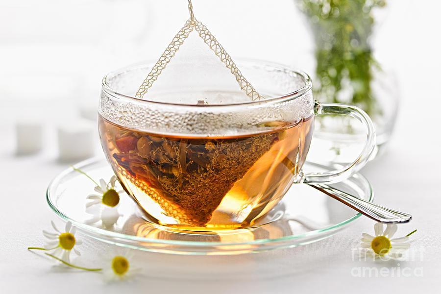 Beverage Photograph - Chamomile Tea by Elena Elisseeva