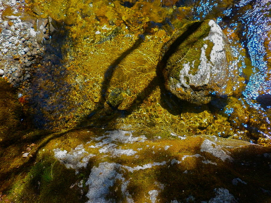 Landscape Photograph - Childs Brook Patterns by George Ramos