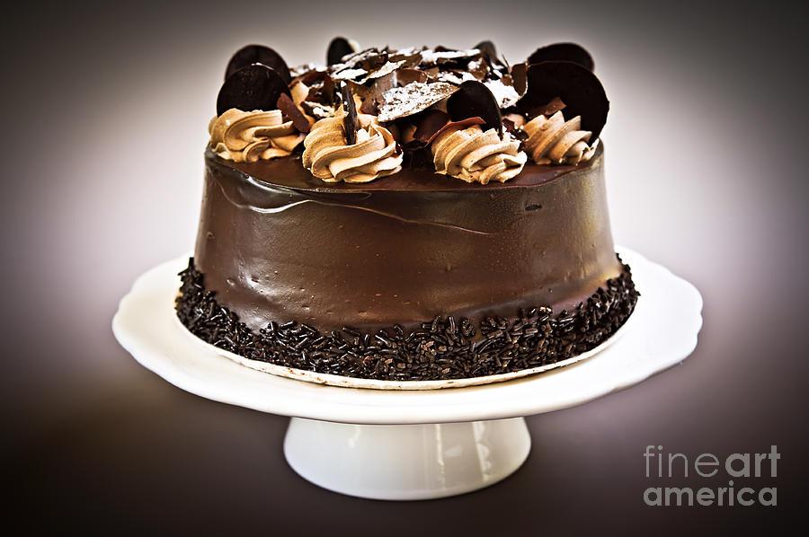 Cake Photograph - Chocolate Cake by Elena Elisseeva