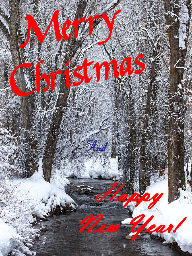 Christmas Cards Photograph - Christmas Along The Creek by DeeLon Merritt