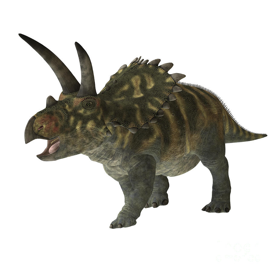 Coahuilaceratops Digital Art - Coahuilaceratops Dinosaur by Corey Ford
