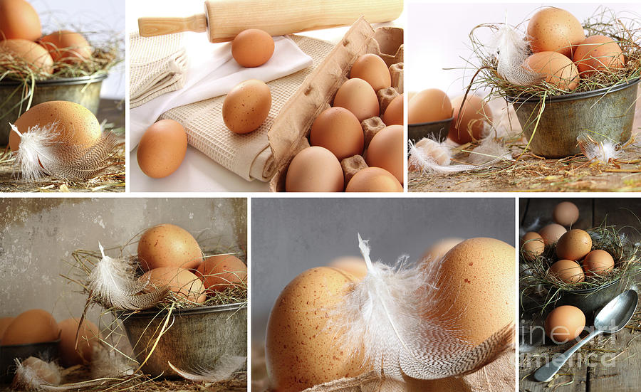 Background Photograph - Collage Of Brown Eggs Images  by Sandra Cunningham