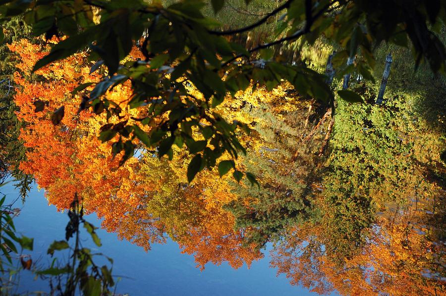 Usa Photograph - Colorful Reflections by LeeAnn McLaneGoetz McLaneGoetzStudioLLCcom