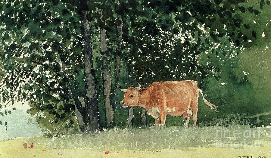 Cow In Pasture Painting - Cow In Pasture by Winslow Homer