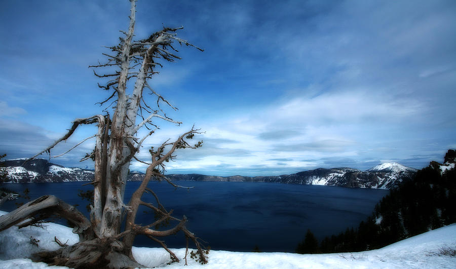 Crater Lake Photograph - Crater Lake by Bonnie Bruno