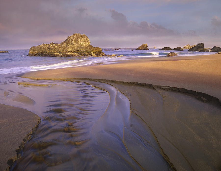 Beach Photograph - Creek Flowing Into Ocean At Harris by Tim Fitzharris