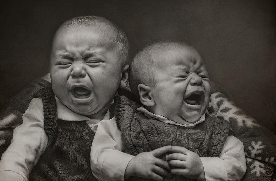 Babies Photograph - Cry Babies by Pat Abbott
