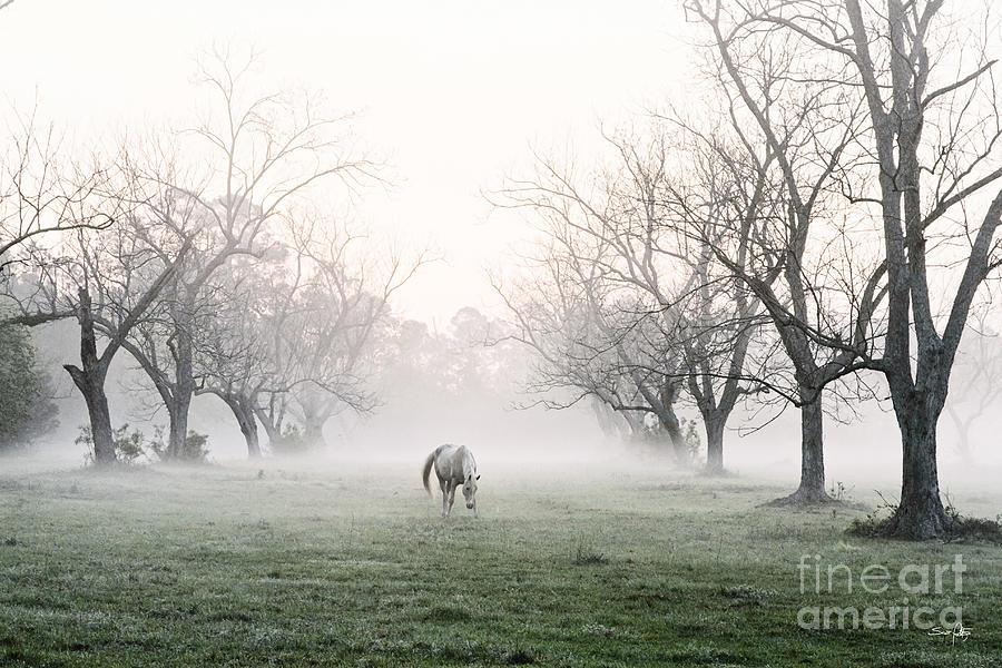Daybreak Photograph - Daybreak by Scott Pellegrin