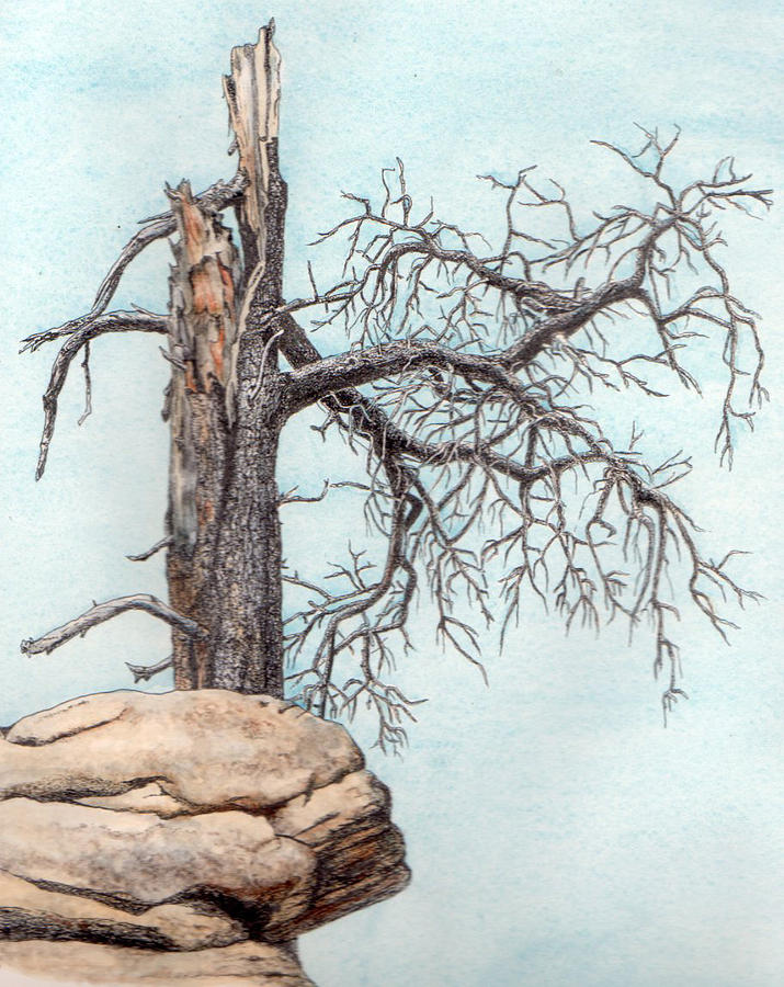 Dead Tree Painting - Dead Tree by Inger Hutton