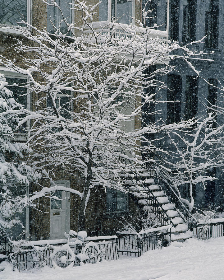 Apartment Building Photograph - Drolet Street In Winter, Montreal by Yves Marcoux