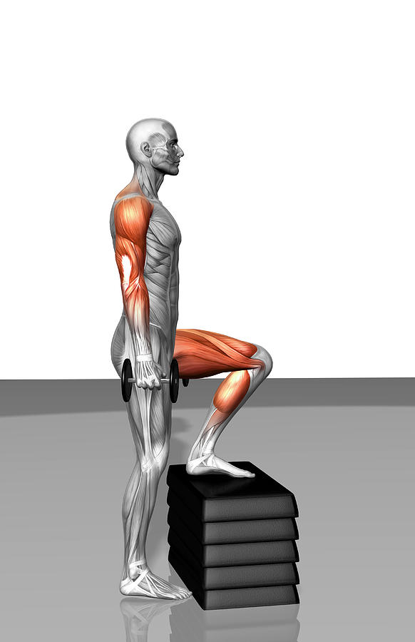 Dumbbell Step-up Exercise (part 2 Of 2) Photograph by MedicalRF.com