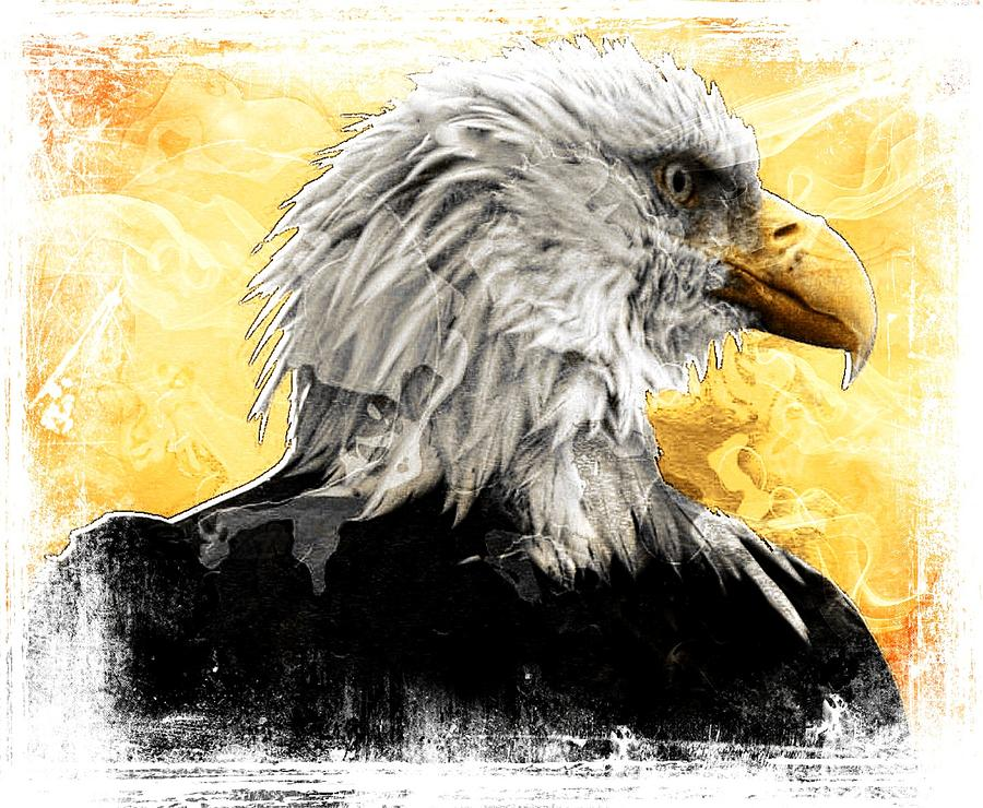 Bald Eagles Digital Art - Eagle 6 by Carrie OBrien Sibley