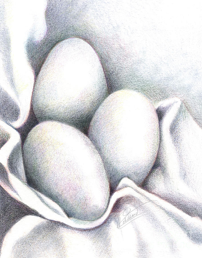 Colored Pencil Drawing - Eggs In Folds by Lissa Rachelle