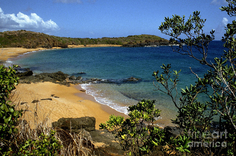 Puerto Rico Photograph - El Convento Beach by Thomas R Fletcher