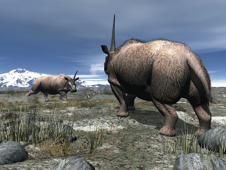 Elasmotherium Photograph - Elasmotherium, Artwork by Walter Myers