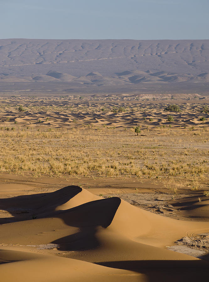 Vertical Photograph - Erg Chigaga, Sahara Desert, Morocco, Africa by Ben Pipe Photography
