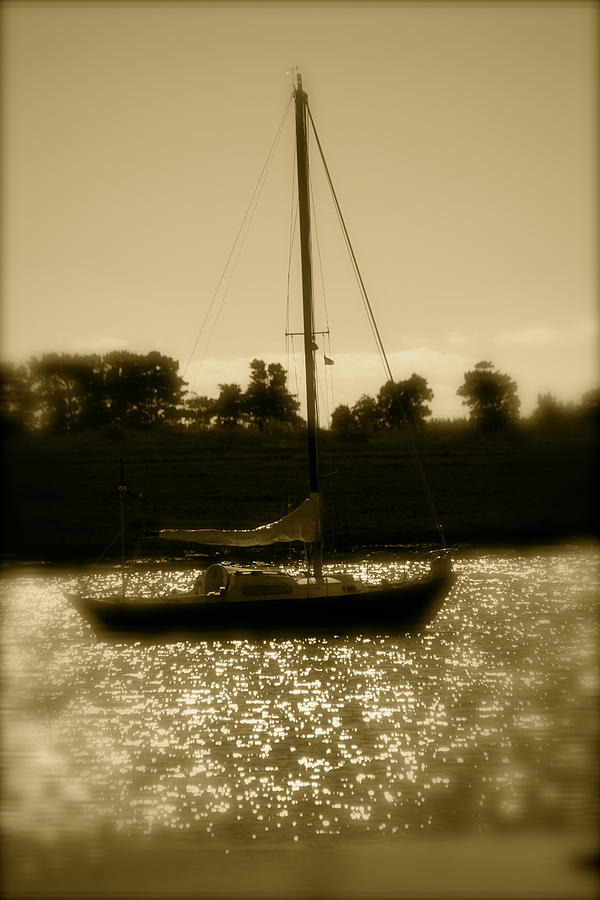 Photographer Photograph - Evening Sail by Jez C Self