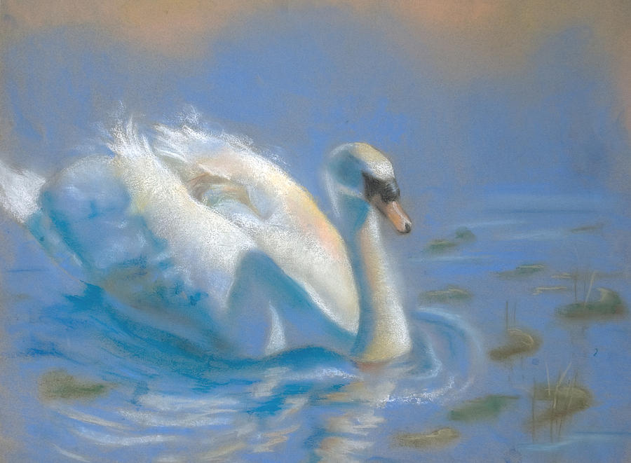 Swan Pastel - Evening Stroll by Joanna Gates