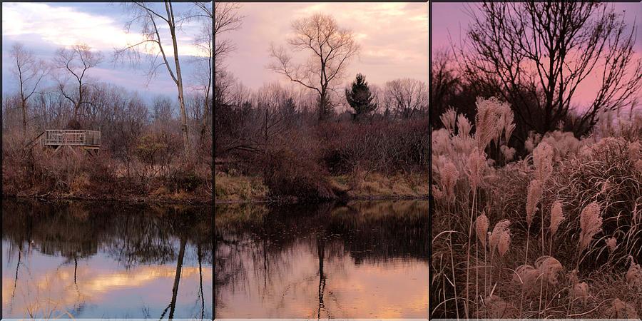Landscape Photograph - Fading Light by Christy Woods