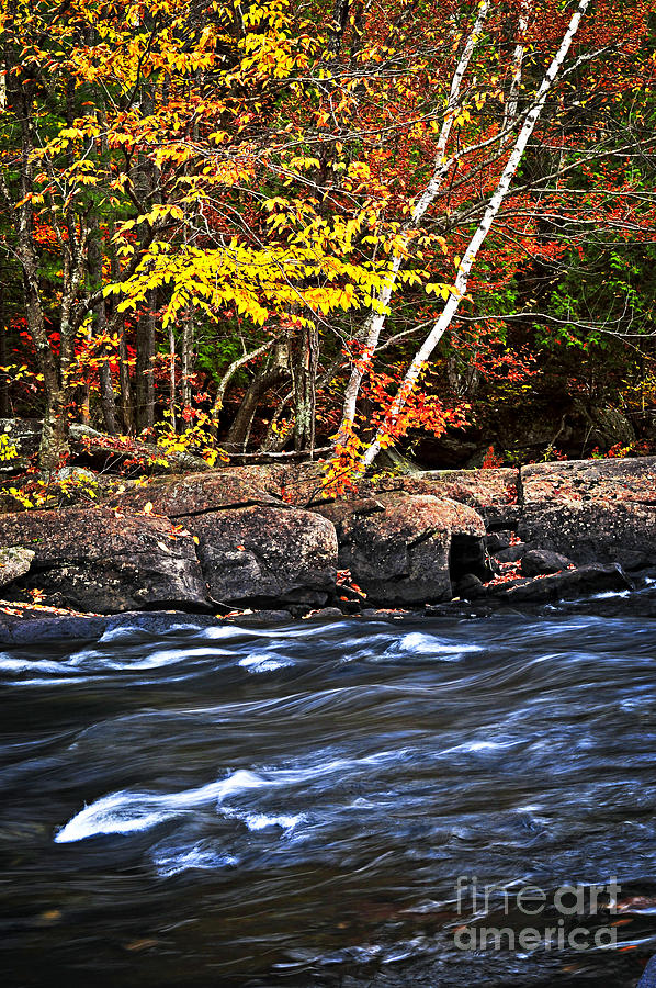 Autumn Photograph - Fall Forest And River Landscape by Elena Elisseeva