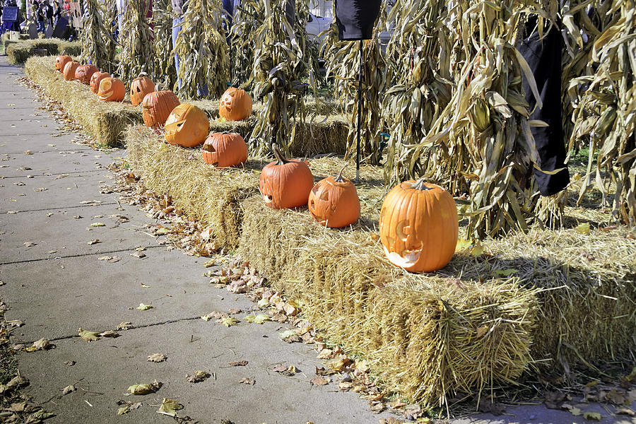 Autumn Photograph - Fall  Halloween On Tillson Street by LeeAnn McLaneGoetz McLaneGoetzStudioLLCcom