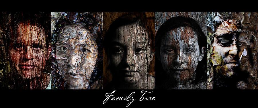 Family Tree Painting - Family Tree by Christopher Gaston