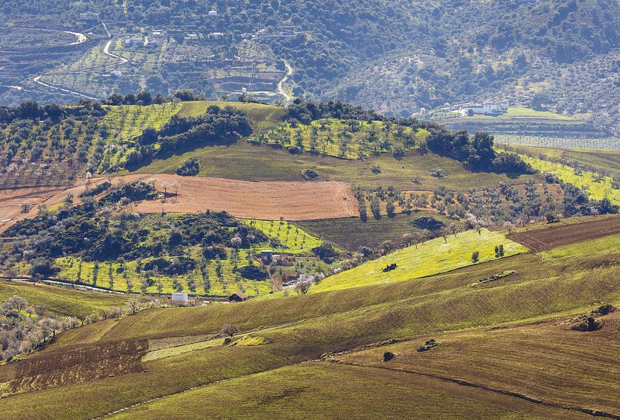Horizontal Photograph - Farmland Near Casabermeja, Spain. by Ken Welsh