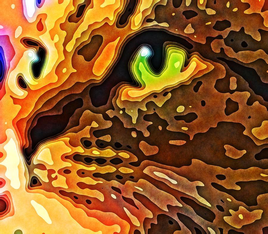 Cat Photograph - Feline Face Abstract by David G Paul