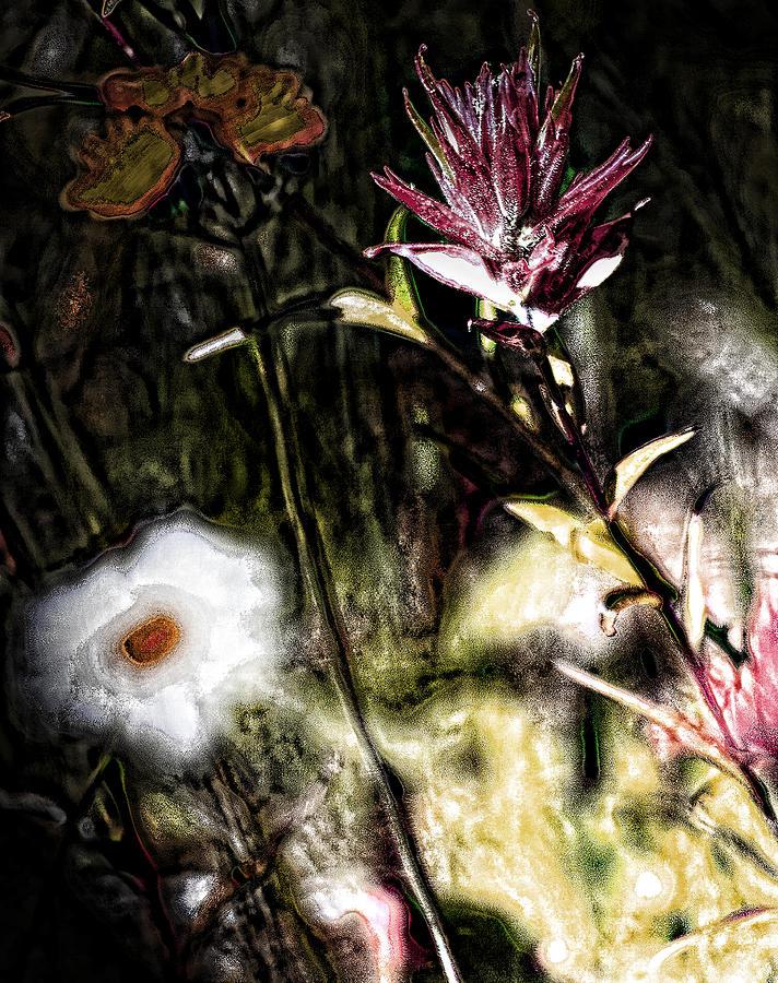 Flowers Photograph - Field Of Feelings  by Jerry Cordeiro
