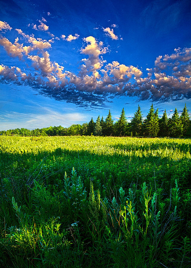 Horizons Photograph - Fields And Dreams by Phil Koch