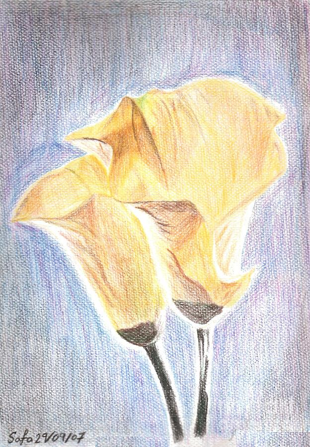 Flowers Drawing - Flowers by Safa Al-Rubaye