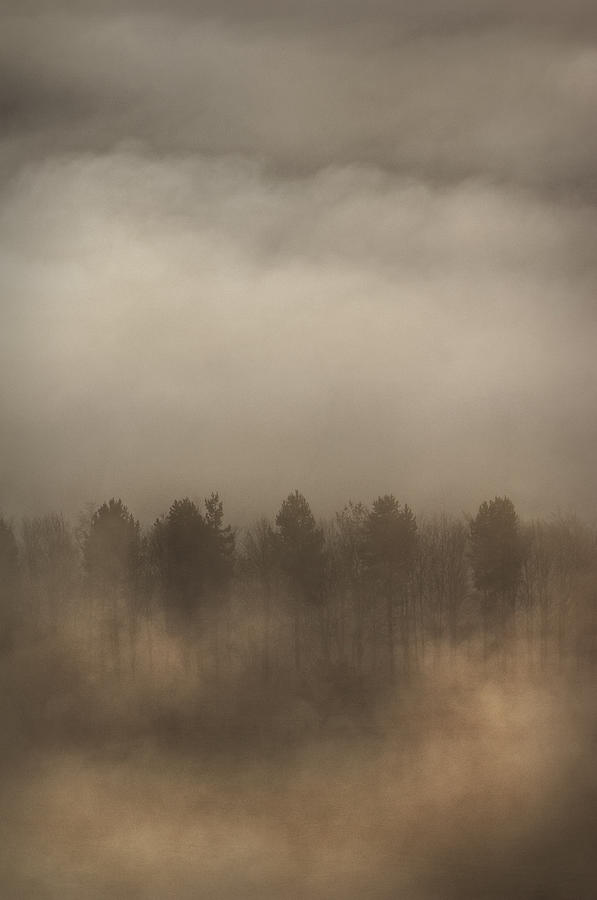 Fog Photograph - Fog Wall by Andy Astbury