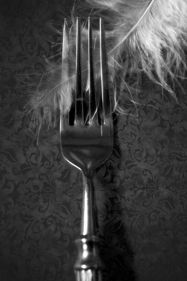 Silver Photograph - Fork And Feather by Joana Kruse
