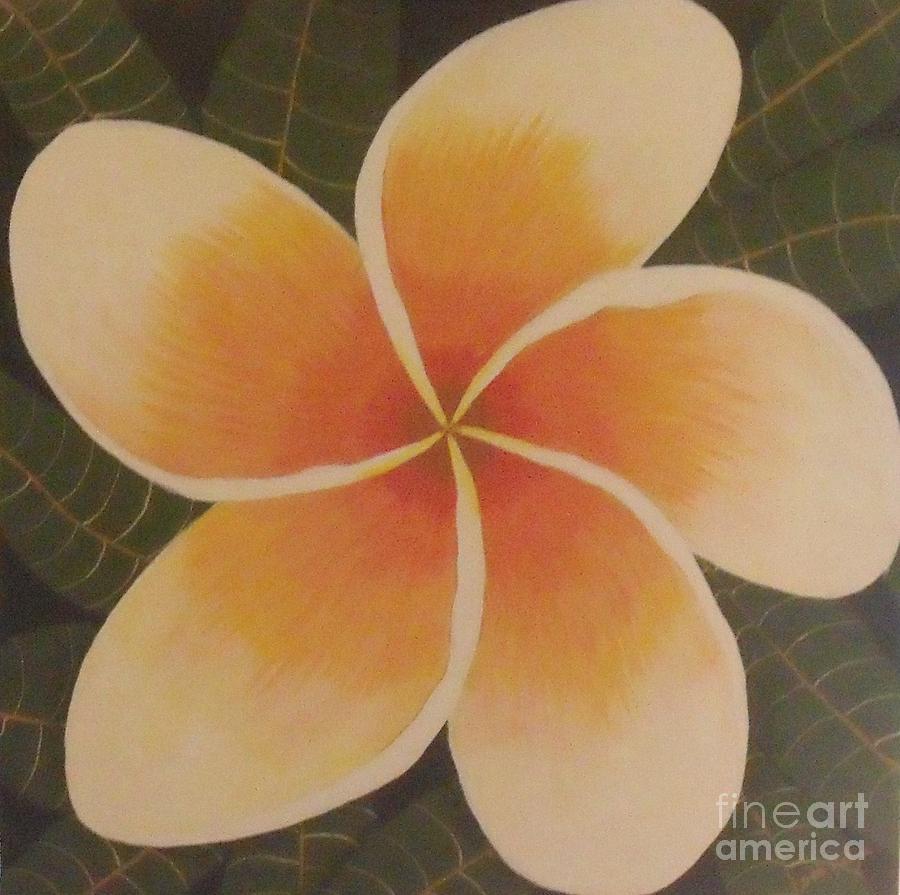 Flowers Painting - Frangipani by Debra Piro