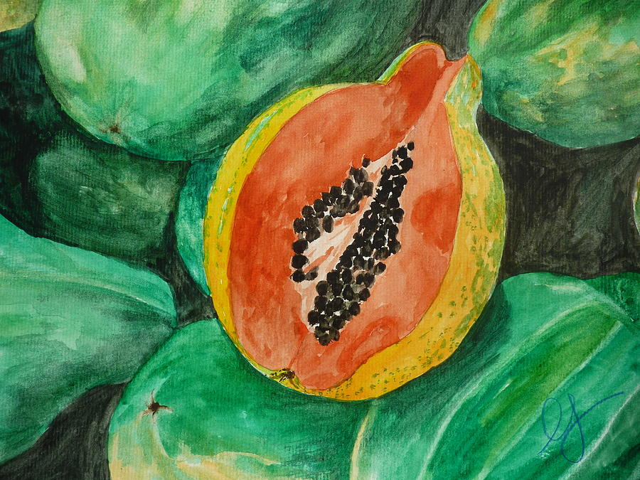 Fruit Painting - Fresh Papaya For Sale by Estephy Sabin Figueroa