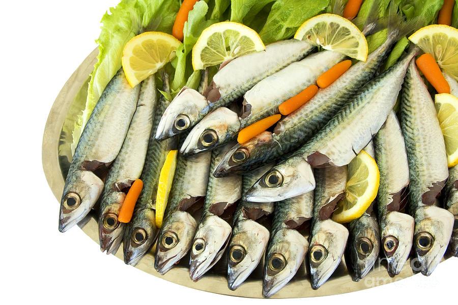 Aegean Pyrography - Fresh Uncoocke Fish by Soultana Koleska