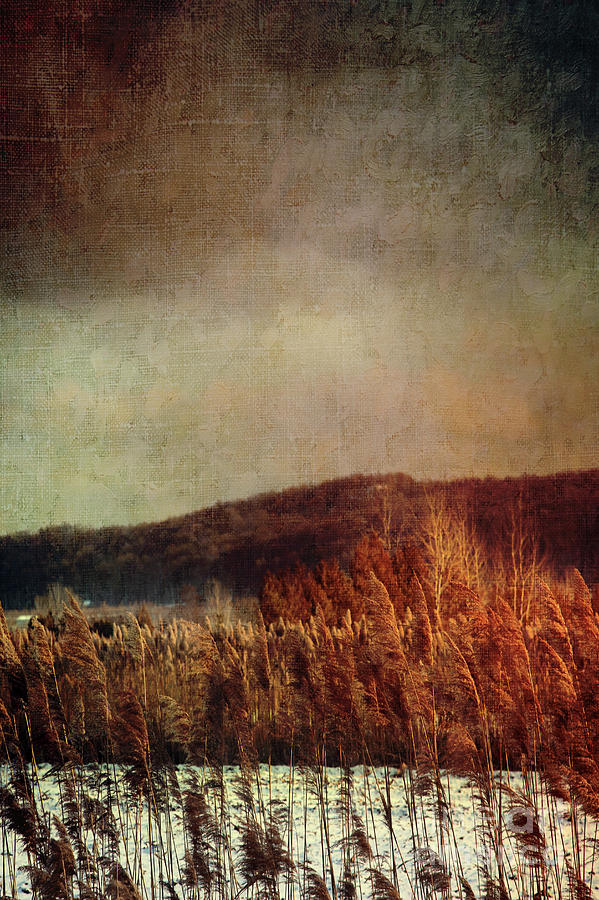 Abandoned Photograph - Frosty Field In Late Winter Afternoon by Sandra Cunningham