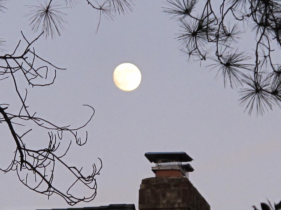 Nature Photograph - Full Moon by Valia Bradshaw