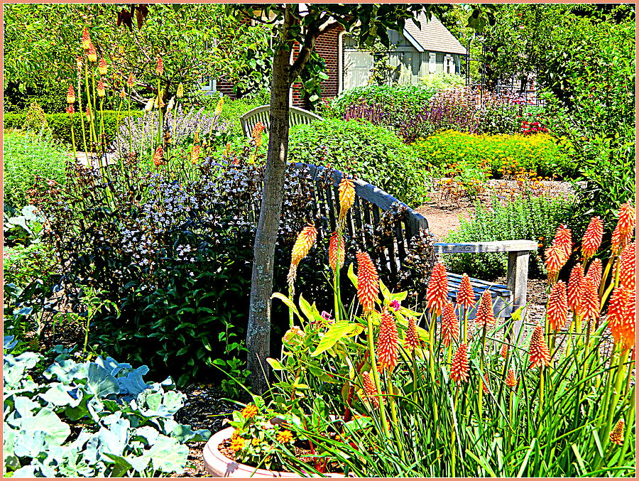 Garden Photograph - Garden Bench by Mindy Newman