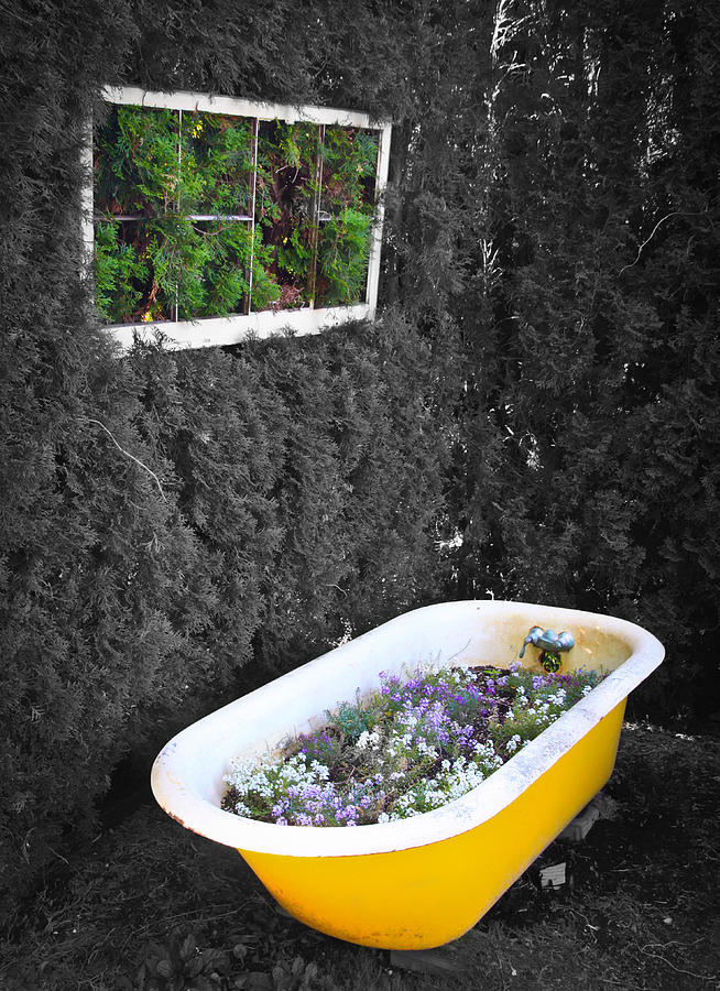 Garden tub photograph by steve mckinzie Garden tube