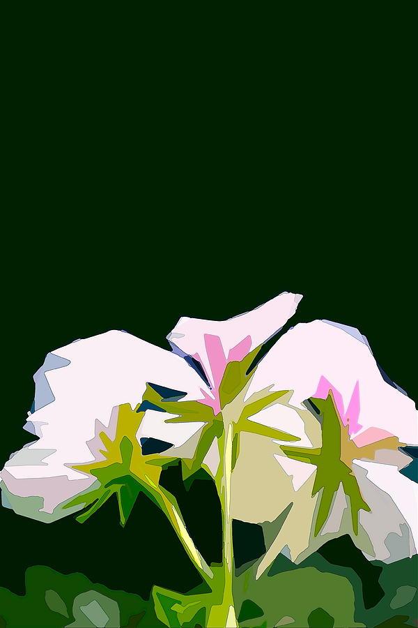 Floral Photograph - Geranium 3 by Pamela Cooper