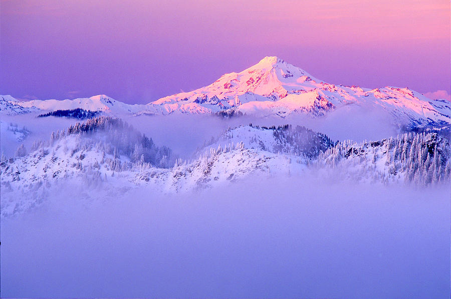 Mountain Photograph - Glacier Peak Alpenglow - Purple by Misao  Okada