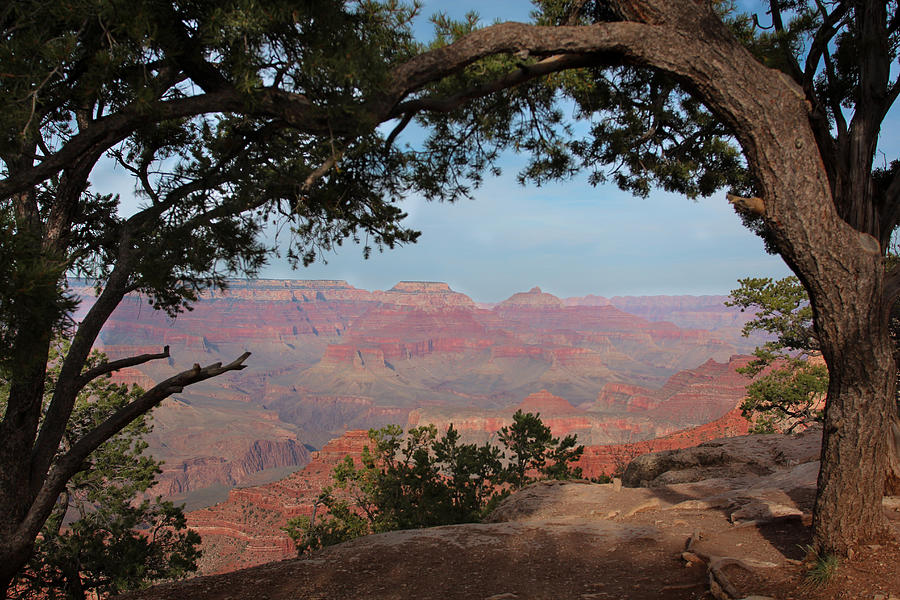 Landscape Photograph - Grand Canyon by Olga Vlasenko