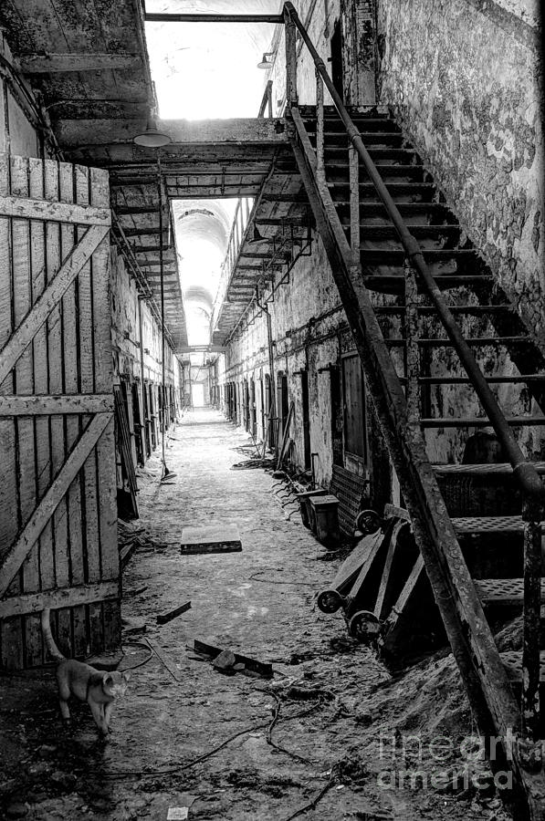 Al Photograph - Grim Cell Block In Philadelphia Eastern State Penitentiary by Gary Whitton