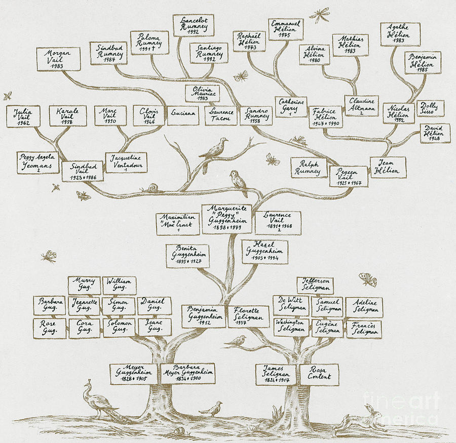 Genealogy Photograph - Guggenheim Family Tree by Science Source