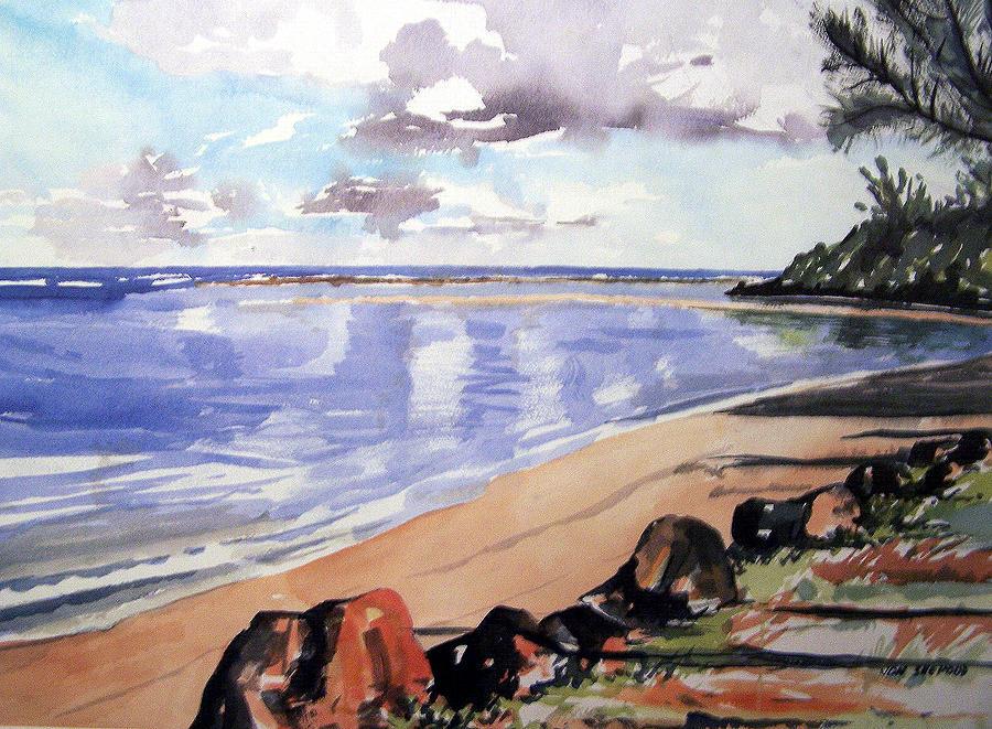 Hanalei Painting - Hanalei Bay by Jon Shepodd