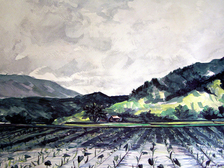 Kauai Painting - Hanalei Valley by Jon Shepodd