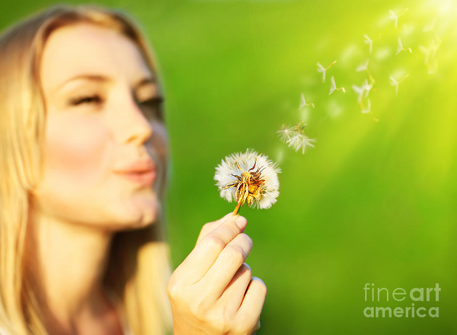Happy Beautiful Girl Blowing Dandelion Photograph By Anna Om